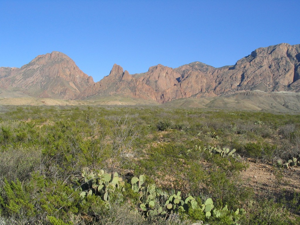 Chisos Campground