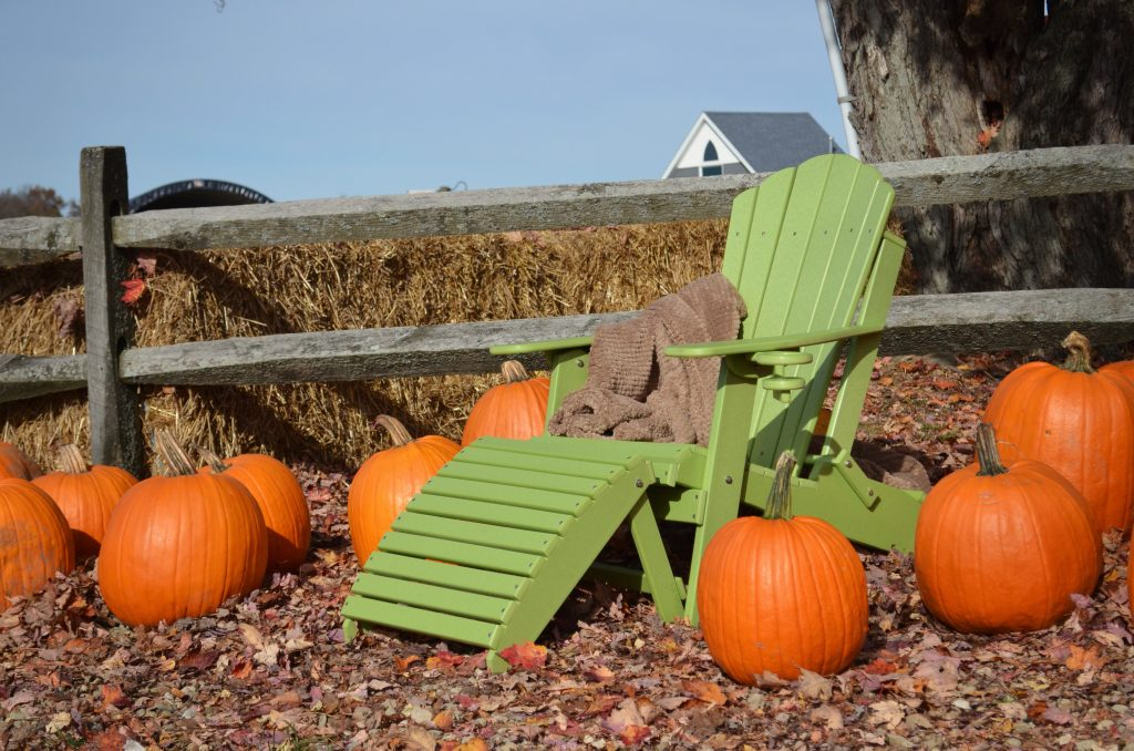 Fall Adirondack Chair
