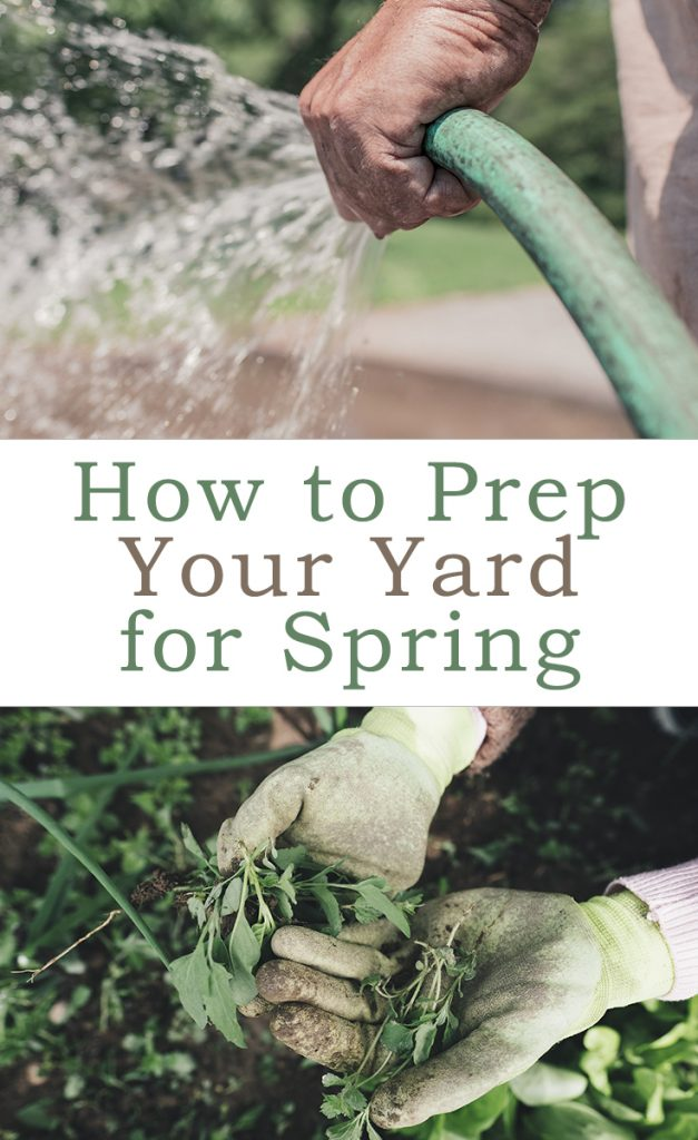 How to Prep Your Yard for Spring Pinterest Graphic