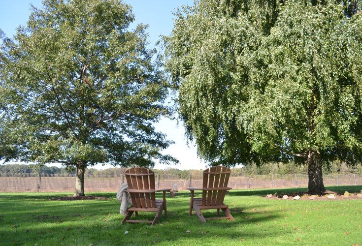 Outer Banks Value Line Adirondack Chair in Antique Mahogany